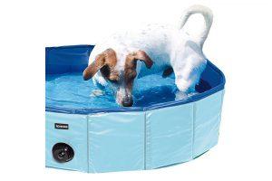 Produktbild von Doggy-Pool in verschiedenen Größen bis zu 50% reduziert!