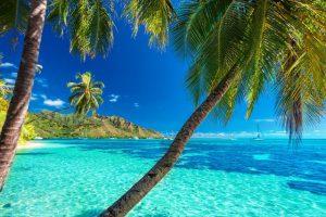 Bild von Deine nächste Reise geht auf uns – Wir schenken dir deinen Urlaub
