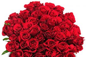 Bild von Bis zu 55% Rabatt auf deinen nächste Blumen-Lieferung! Lieferung zum Wunschtermin!