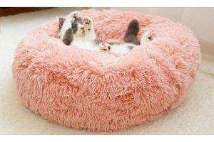 Bild von Haustierbett in verschiedenen Größen und Farben!